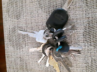 Lost & Found KEYS on Armstrong St