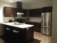 WINTER SPECIAL! SPACIOUS LUX 2Bdrm-10 mins from Downtown Ottawa