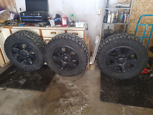 35x12.50x20 muteki trail hogs