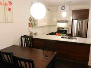 3 1/2 Condo furnished, AC and indoor parking, Namur Metro MTL