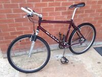 Raleigh M Trax 1000 Mountain Bike