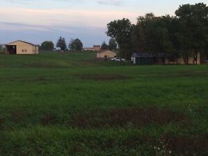 Farm for Sale between Hanover and walker ton $375000