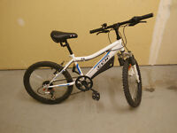 Kids' Bike - 20 inch tires - in great condition