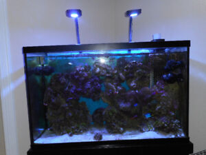 aquarium eau sale 110 galon