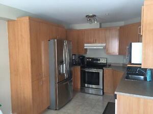 2 bedroom Spacious Modern Apartment for rent May/June
