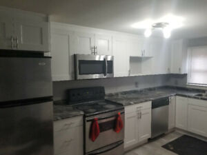 Newly renovated bachelor apartment $950 all incl. avail. May 1st