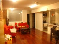 Nice 3 bedrooms apartment beside McGill University