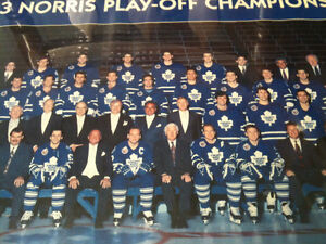 Toronto maple leafs   1993 norris champions framed photo 20 x 16 Kitchener / Waterloo Kitchener Area image 1