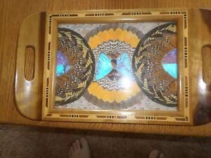 Beautiful Butterfly Wing Tray. Peterborough Peterborough Area image 1