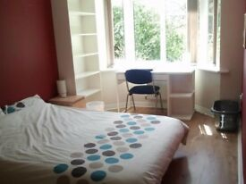 Big room in friendly bright house, close to city and university. All bills included. Good transport.