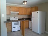 7 Sproul Ct - RARE - Dog Friendly Apartment in Millidgeville !