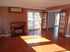 Luxurious Downtown One or Two Bedroom Apartment Condo