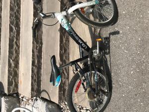 Louis Garneau kids bike.