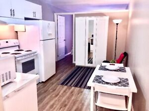Clean and Contemporary ! Fully Furnished ! All Utilities Incl.