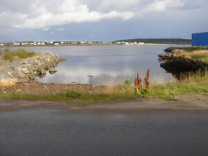 Land for Sale in Catalina with water vew St. John's Newfoundland image 5