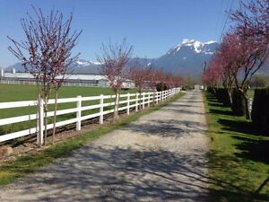Chilliwack farms for sale