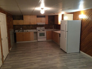 1 Bedroom Basement Suite in Castle Downs Available Immediately
