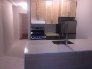newly renovated 3 1/2. Heart of plateau, close to Metro Laurier.