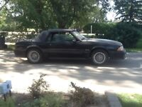 For Sale 1989 Mustang Convertible