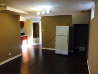 ** Reduced ** Renovated 1 Bedroom Lower Suite in Glenbrook SW