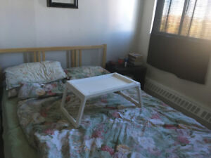 Female roommate wanted_fully furnished_available now