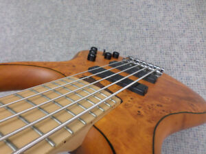 MTD Kingston ZX 5 String Bass w/Gig Bag