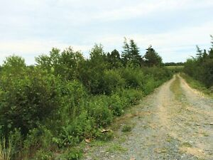 Land for Sale - Broad Cove Trinity Bay - Oceanview! St. John's Newfoundland image 3