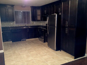 Stop Looking!  3 bdrm MAIN level of a house in Millwoods Pets OK