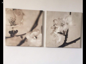 2 set of painted pictures ex co as brand new both $40