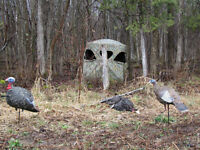 Eastern Canadian Outfitters spring turkey hunts