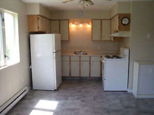 Beautiful top floor 2 BR close to Jones Lake & Downtown