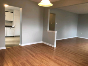Summer Rental close to Downtown/Queens