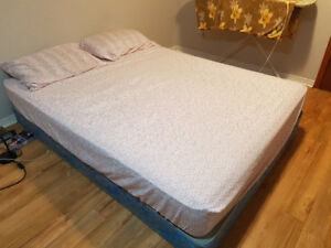 Queen Bed (Sealy) and Box Spring