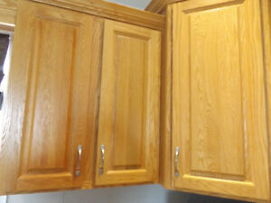 Oak cabinet doors and crown moulding (no cabinets)