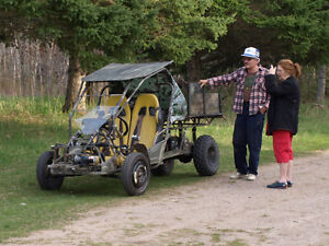 electric side by side buggy