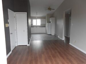 Large 2 bedroom. $595 plus utilities or $700 electric included