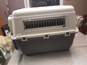 Dog  crate for airlines $80