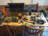 80ltr fish tank all accessories and more