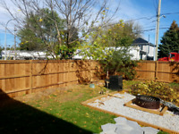 Need a fence or a deck?