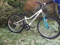 Kids bike 24''