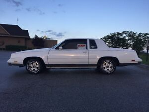 Cutlass Supreme ready to find a new owner