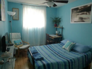 Beautiful room in our home