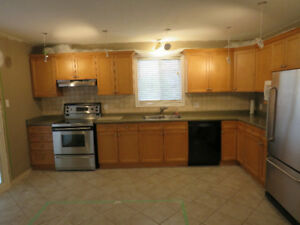 Kitchen Cabinets- Great shape!