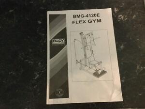 Flex Gym and Boxing Bag  (REDUCED)