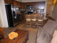 Playa del Sol Gorgeous 2 Bdrm with many upgrades