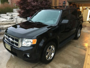 2010 Ford Escape XLT 4WD SUV, Crossover