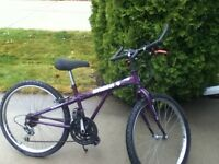 Raleigh Big Bear Youth Mountain Bike