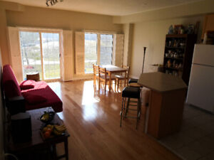 Big room with private bathroom, grad house, basement, clean
