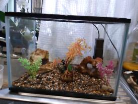 2x small starter fish tank 24 litres