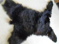 Genuine Black Bear Rug